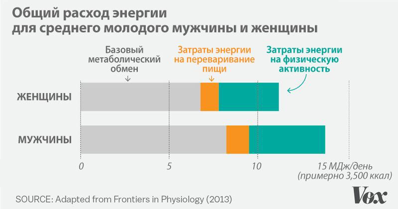 Порівняння витрат енергії у чоловіків і жінок