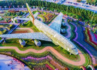 Літак з квітів в Дубаї потрапив в Книгу рекордів Гіннесса