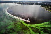 Одинадцять таємниць Київського моря
